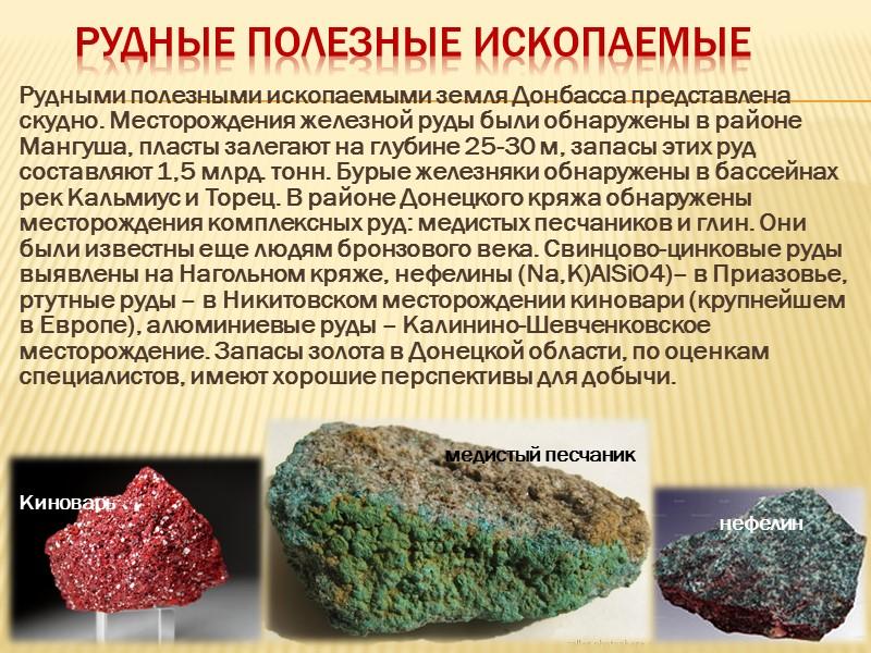 Полезные ископаемые Донецкая область богата полезными ископаемыми. Здесь обнаружено больше 50 разнообразных полезных ископаемых,