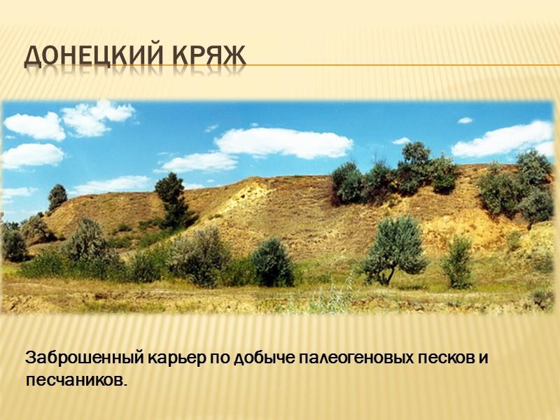 К антропогенным формам рельефа относятся каналы, например, канал Северский Донец – Донбасс, Днепр –