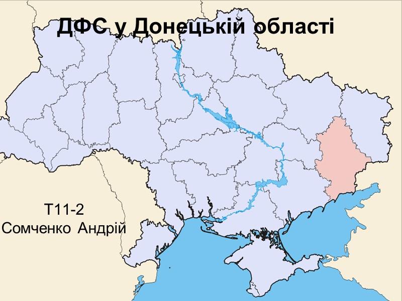 ДФС у Донецькій області Т11-2  Сомченко Андрій