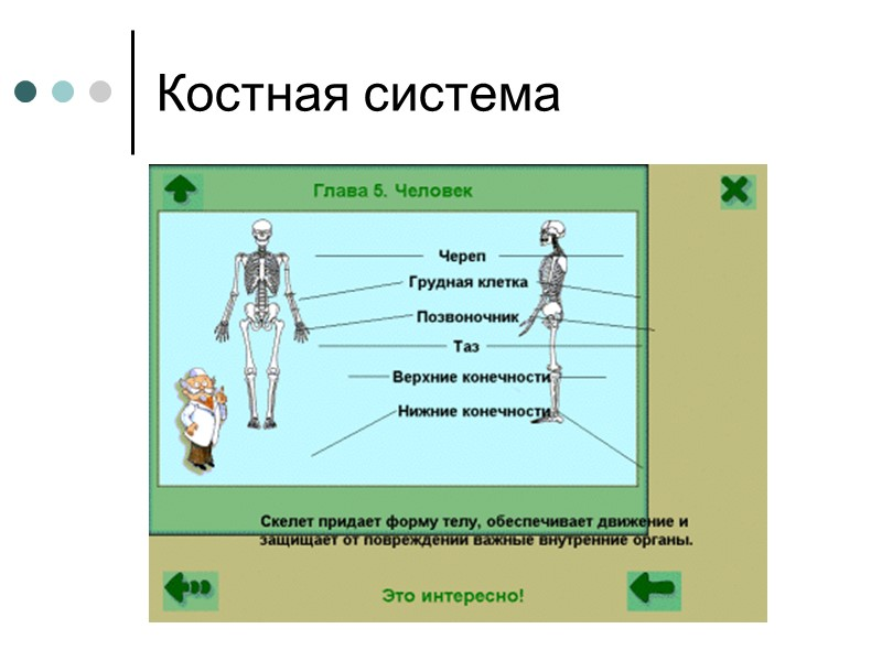 Химические ожоги  Особенностью химических ожогов является длительное действие на кожные покровы химического агента,