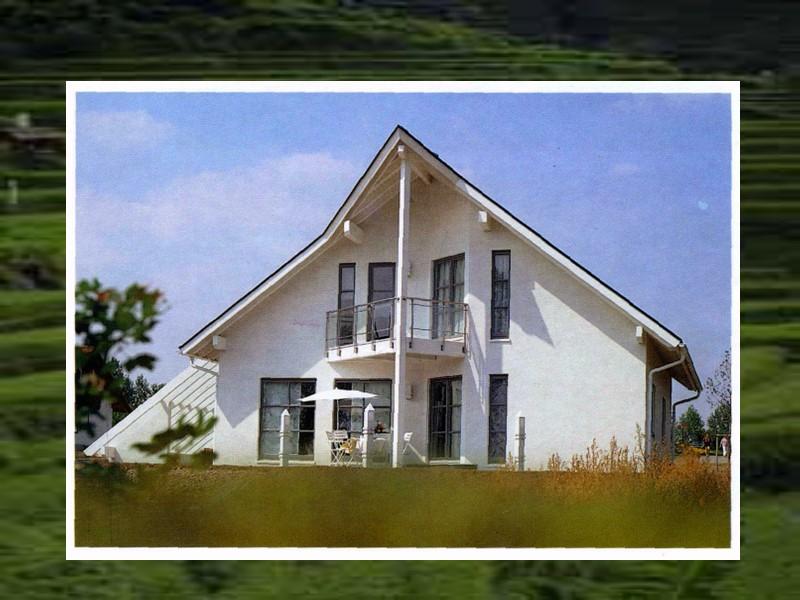 Дом для самого себя.  Рене ван Цук (René van Zuuk) Алмере, Голландия