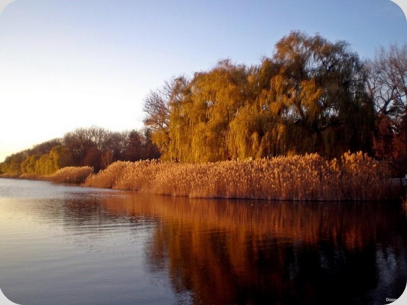 ОЗЕРА Геолого-гидрографические особенности Донецкой области способствовали формированию малого количества озер. Озера Донецкой области –