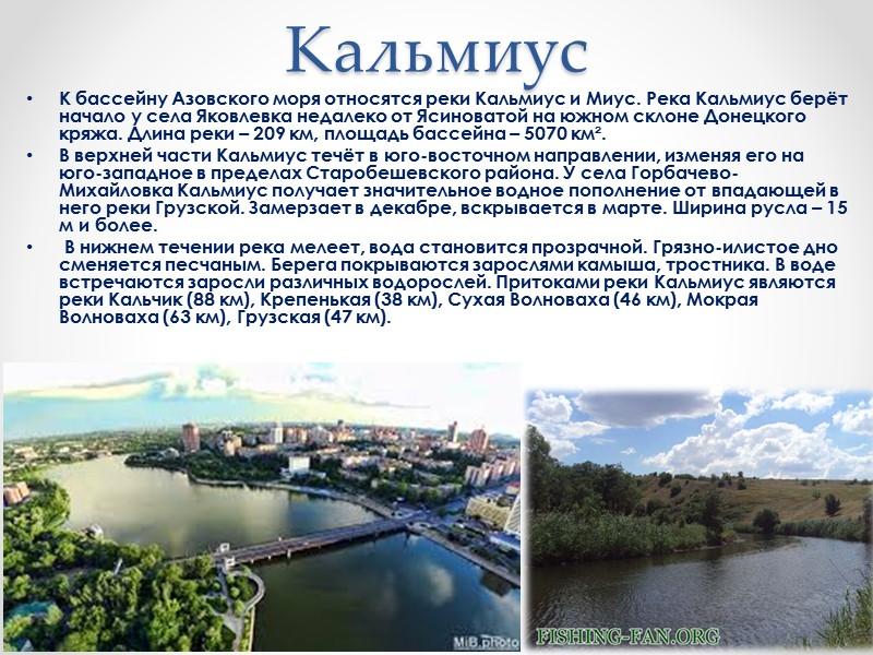 Минеральные источники Донецкой области В Донецкой области открыто более 40 подземных источников минеральных вод
