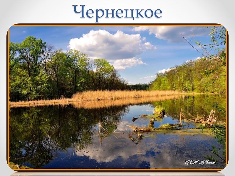 Приток Нитриус – одна из самых чистых рек области, длина реки составляет 54 километра,
