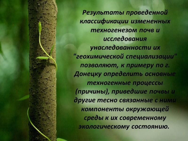 Экологическая обстановка в Донецкой области  Индустриальное развитие Донбасса привело к серьезным экологическим проблемам: