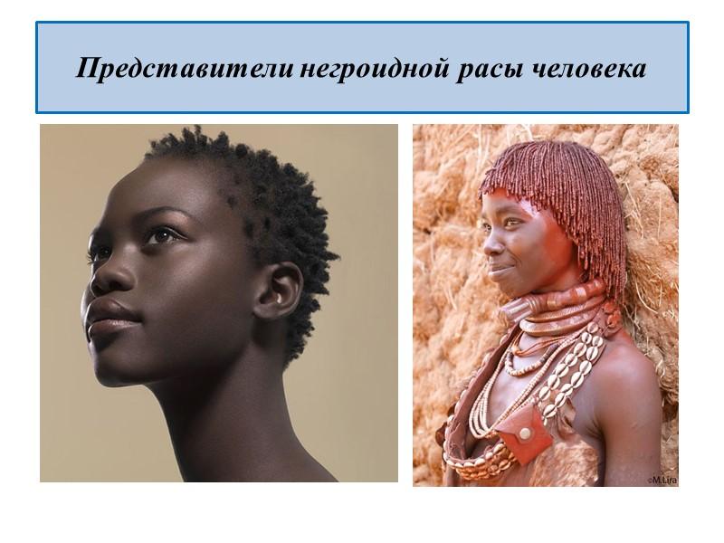 Представители рас человека