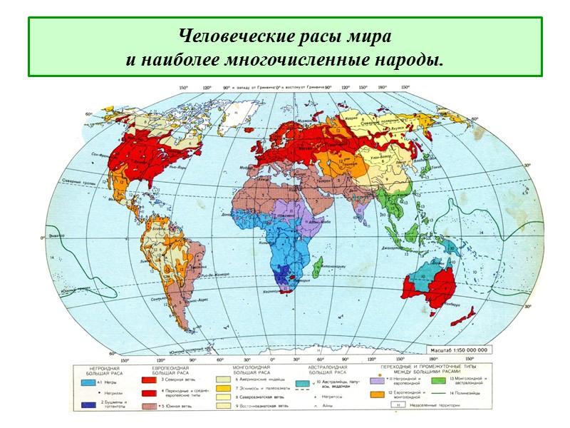 Представители европеоидной расы человека