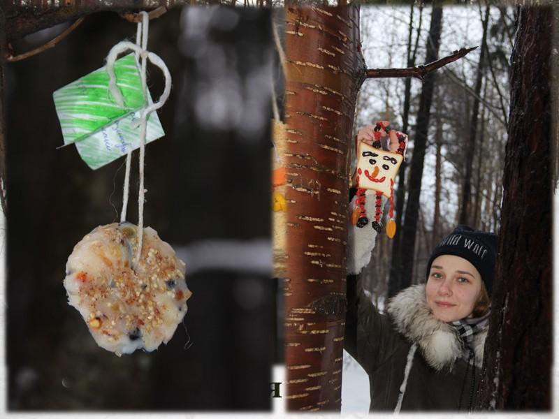 Аргументы в пользу создания тропы в Черняевском лесу Черняевский лес – уникальный природный объект