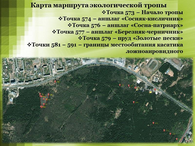 Профессиональные пробы Подготовка группы экскурсоводов  (10 класс, сентябрь 2013)