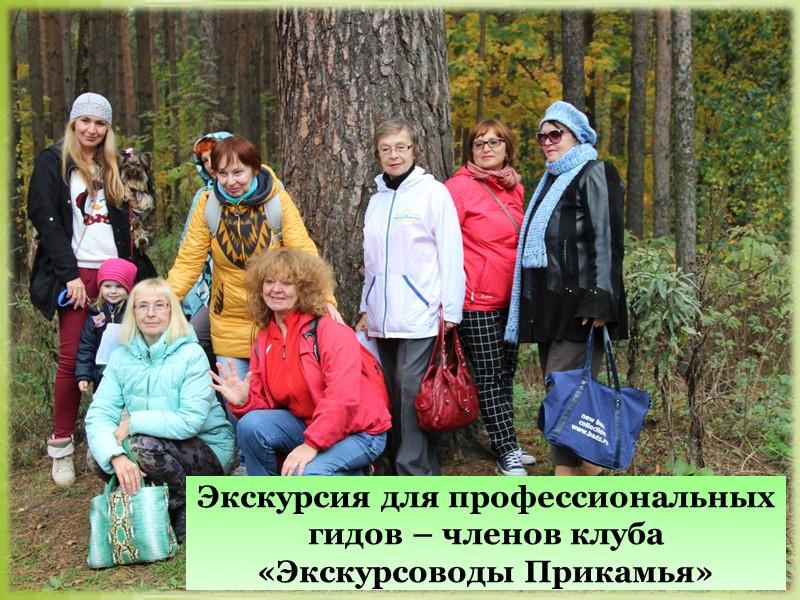 Природоохранная акция «Сохраним Черняевский лес!»
