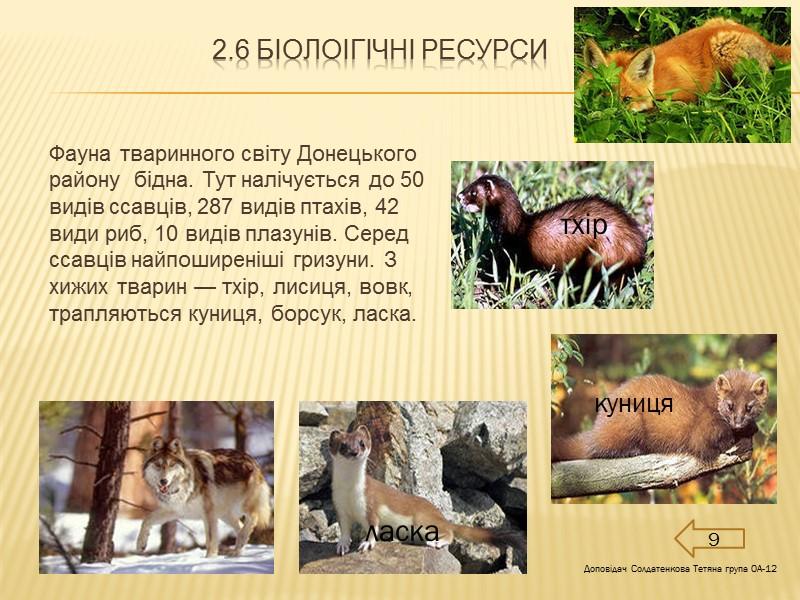 Розділ 1.ЗАГАЛЬНІ ВІДОМОСТІ ПРО РЕГІОН 1.1Економіко-географічне положення  Донецький район розташований на сході і