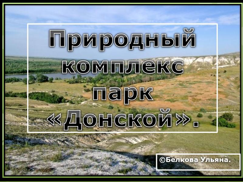 Природный комплекс парк «Донской». ©Белкова Ульяна.