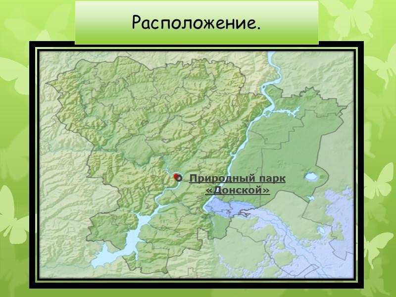 Пролеска Сибирская  (Scilla siberica) Домен:  Эукариоты Царство:  Растения Отдел:  Цветковые
