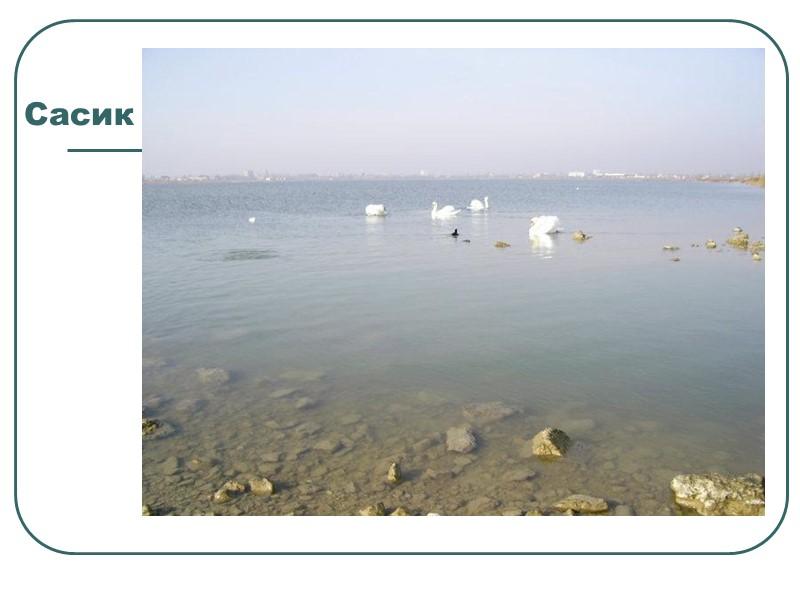 Озеро «Соминець»        Озеро Соминець знаходиться поблизу озера