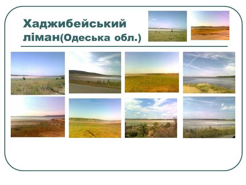 Озеро «Чорне велике»  знаходиться в південно-західному напрямку від селища Шацьк. Власне саме озеро