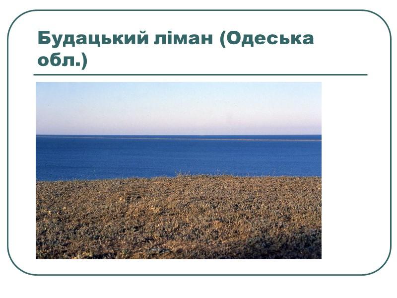Придунайські озера заплавного походження, більшість з них мілководні і з'єднані між собою протоками й