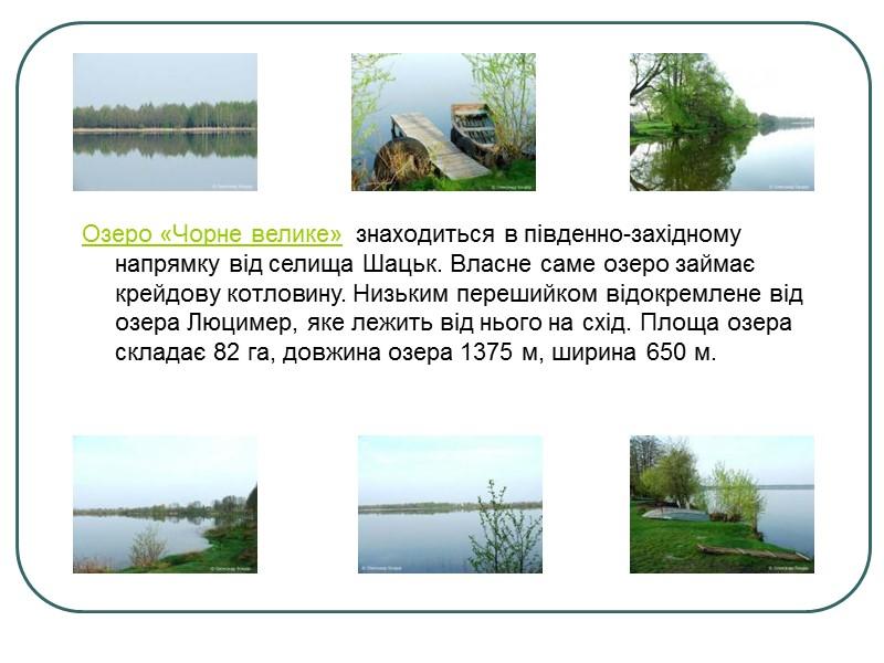 Про озеро Світязь існує чимало легенд… колись на його місці був замок. Його хазяїн
