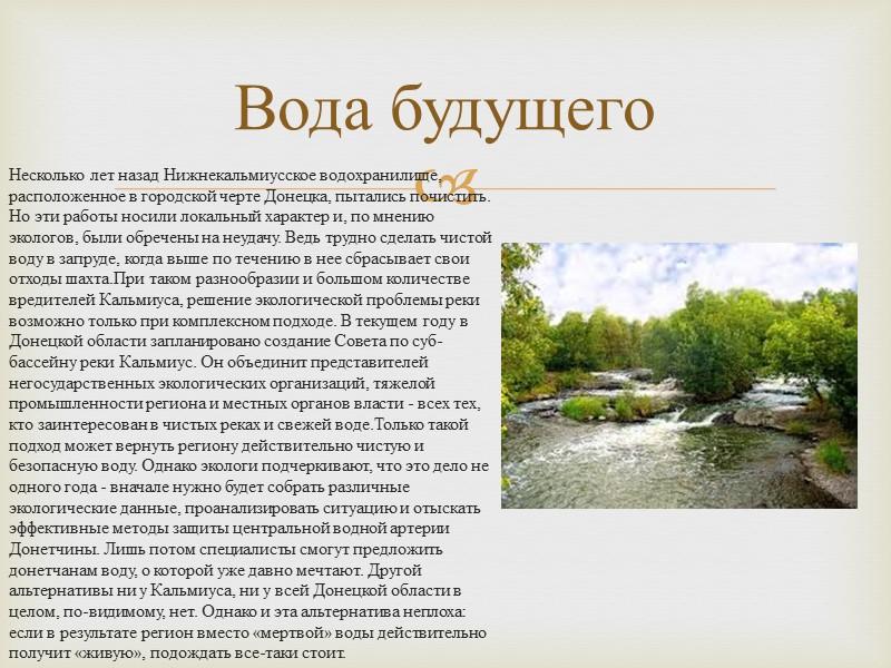 Вода будущего Несколько лет назад Нижнекальмиусское водохранилище, расположенное в городской черте Донецка, пытались почистить.