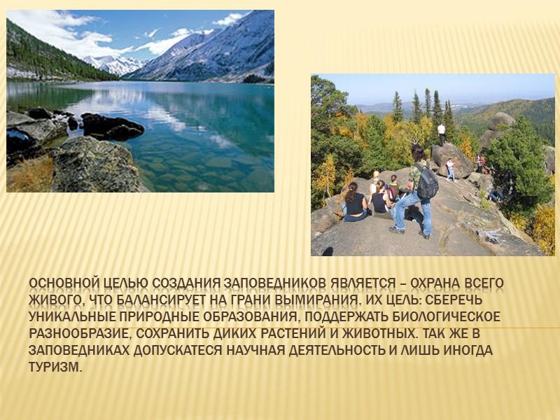 Ценность растительности Хомутовской степи состоит в том, что она сохранилась до наших дней почти