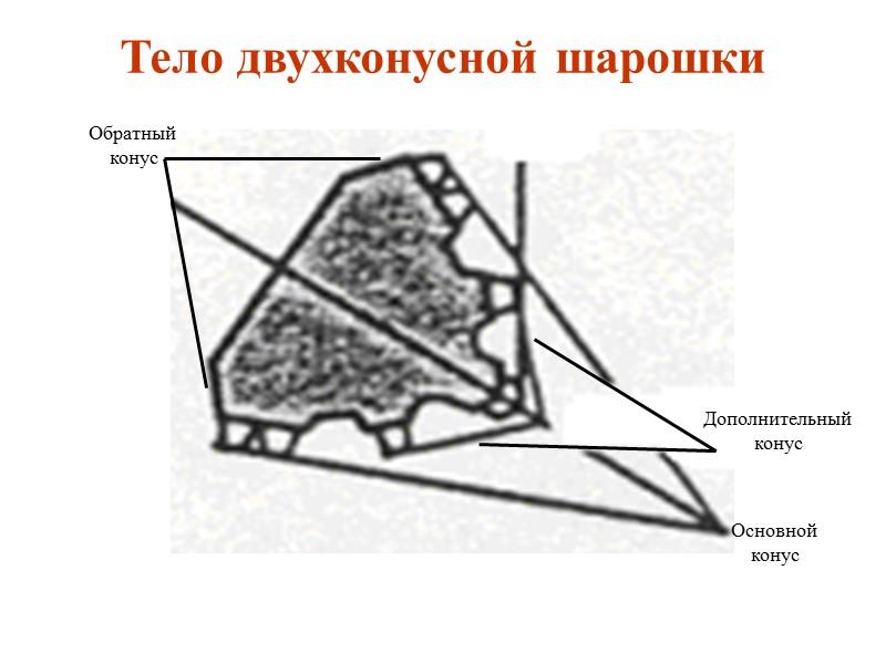 Конструкции шарошечных долот  Общий вид шарошечного долота