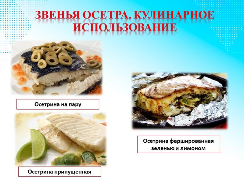 Первичная обработка осетра Рыба осетровых пород, за исключением стерляди, поступает на предприятия полностью