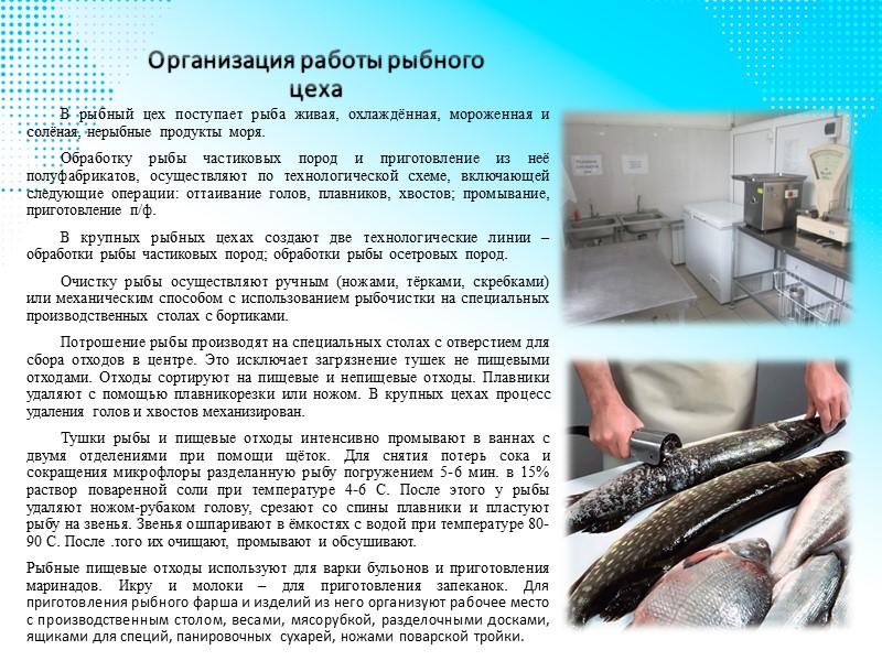 Хранение осетровой рыбы Любая разновидность рыбы считается скоропортящимся продуктом. Осетр не является исключением. Употреблять