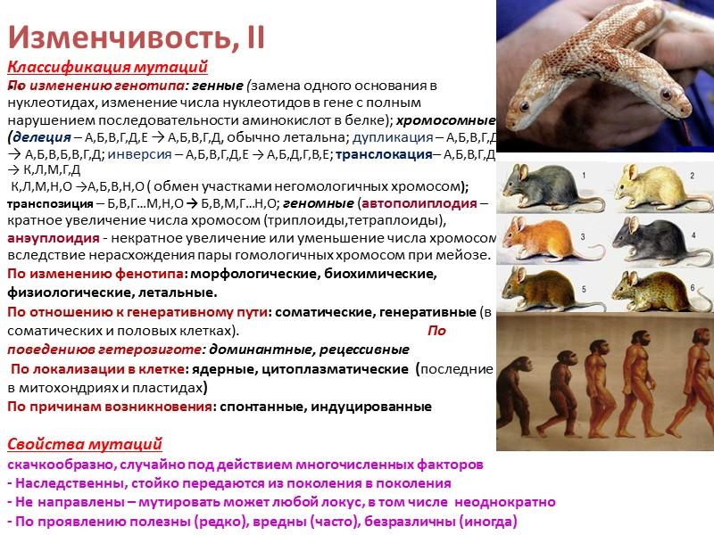 Антидарвинизм . Дарвинизм и естественный отбор как его сердцевина – подвергались и подвергаются