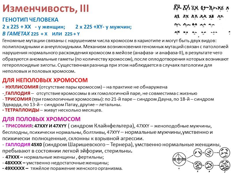 Синтетическая теория эволюции,I .       Синтетическая теория эволюции (СТЭ)