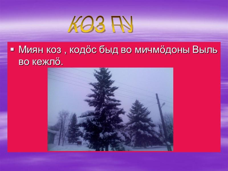 Миян эм: Директор-Любовь Виссарионовна школа