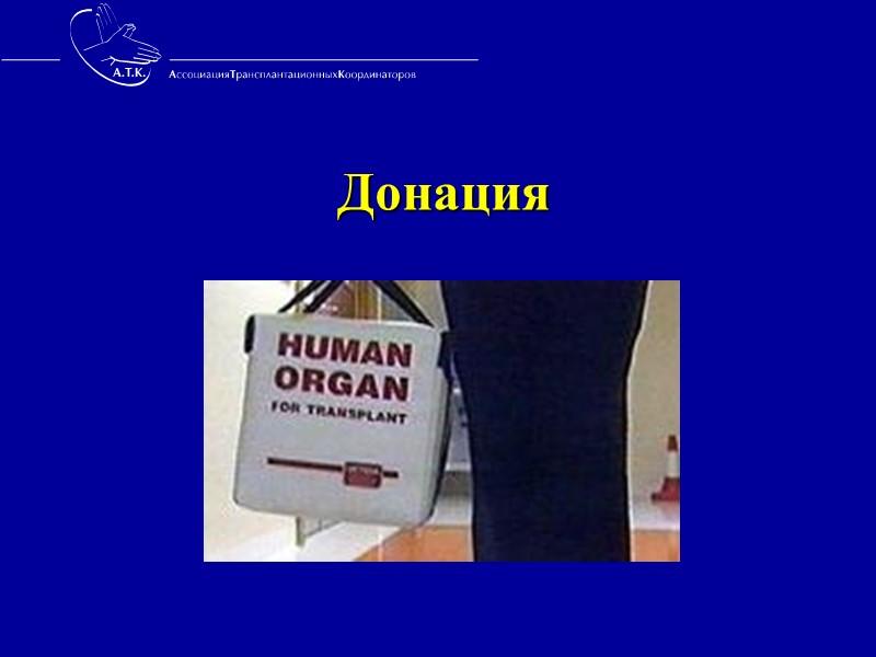 Возможен ли прогресс в органном донорстве ?