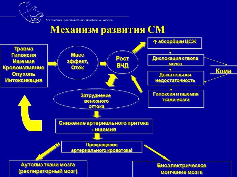 Принципы работы на территории  МО        03.03.2008