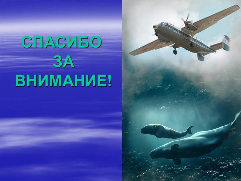 Распределение морских млекопитающих / Marine mammals distribution  7