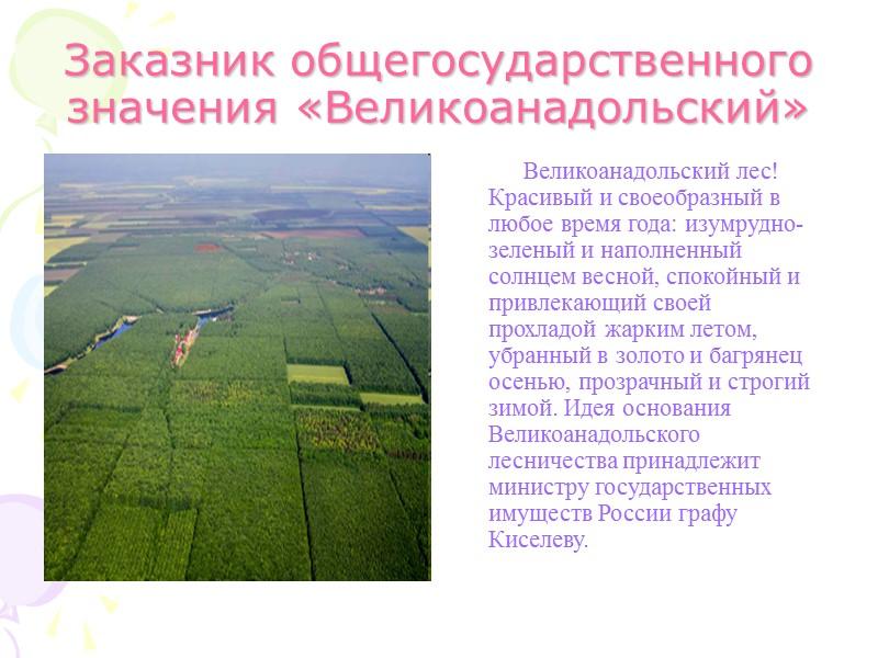 Памятник природы «Белокузьминовский»          Близ села