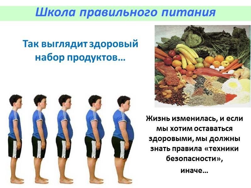 Эффективные диеты для похудения  Школа правильного