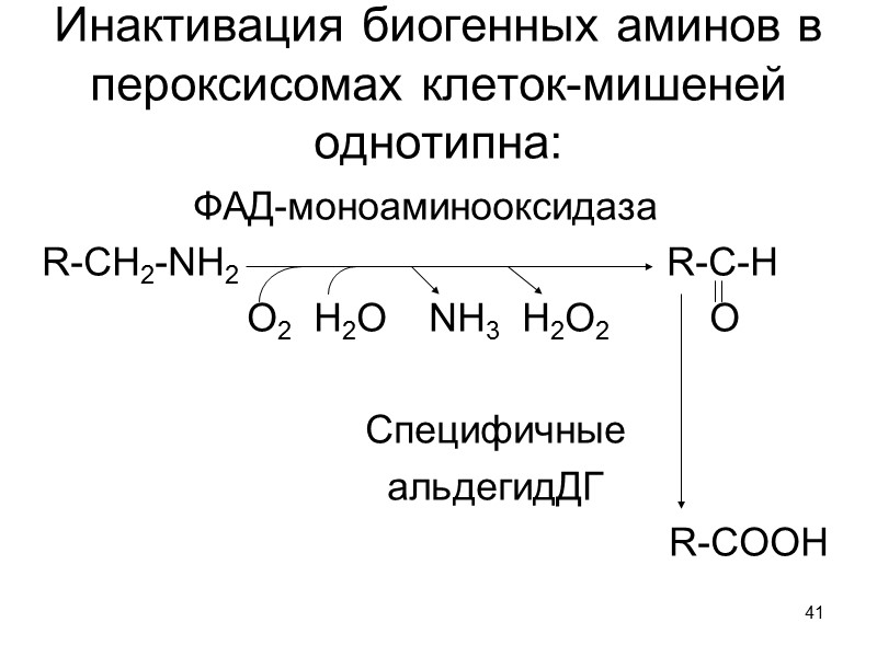 36 Схема активации рибозо-5-Ф для темновой фазы фотосинтеза и синтеза мононуклеотидов