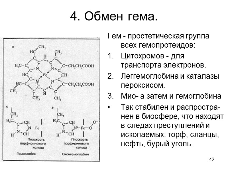 37 Схема биосинтеза нуклеотидов         Оротат
