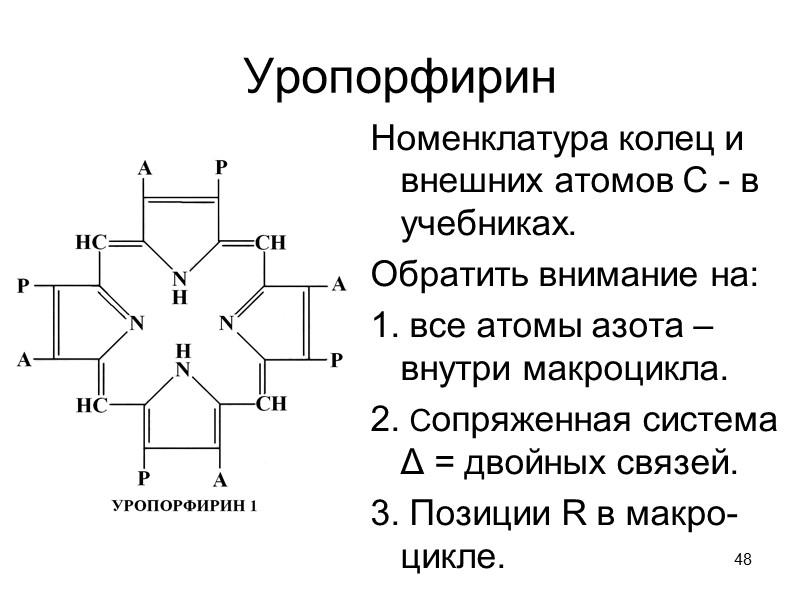 43 Эволюция гемопротеидов  (по H.Lodisch et al., 2004)