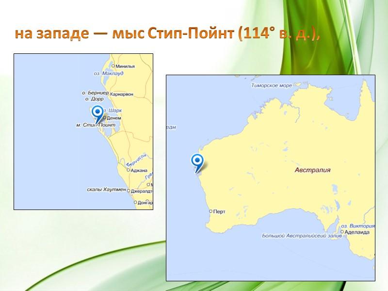 Эвкалипты (камедные деревья) чаще других растений ассоциируются с Австралией. Они растут практически везде, от