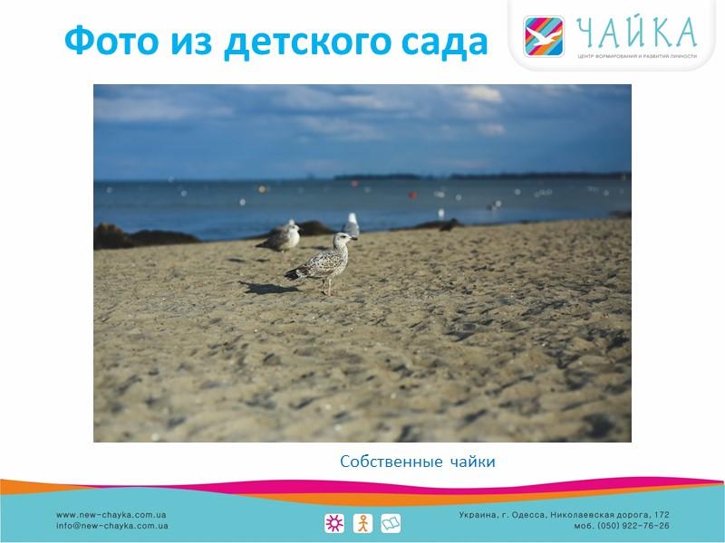 Фото из детского сада Игровая площадка с видом на море