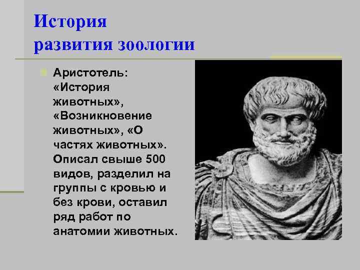 История развития зоологии n Аристотель: «История животных» , «Возникновение животных» , «О частях животных»
