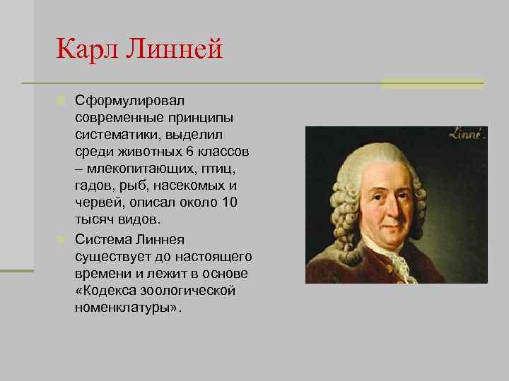 Карл Линней n Сформулировал современные принципы систематики, выделил среди животных 6 классов – млекопитающих,