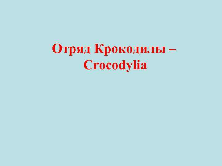 Отряд Крокодилы – Crocodylia