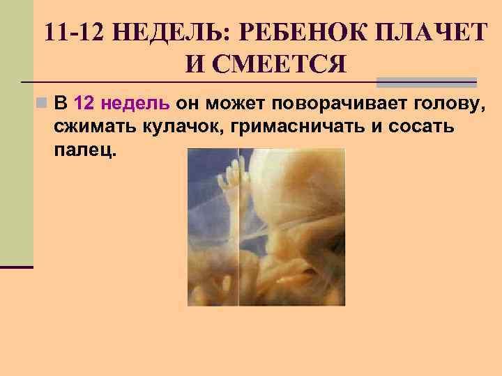 11 -12 НЕДЕЛЬ: РЕБЕНОК ПЛАЧЕТ И СМЕЕТСЯ n В 12 недель он может поворачивает