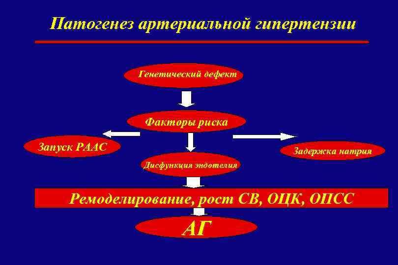 Патогенез артериальной гипертензии Генетический дефект Факторы риска Запуск РААС Задержка натрия Дисфункция эндотелия Ремоделирование,