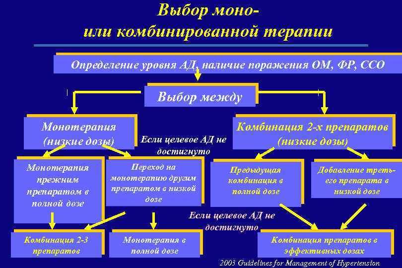 Выбор моноили комбинированной терапии Определение уровня АД, наличие поражения ОМ, ФР, ССО Выбор между