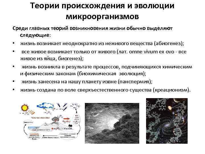 Теории происхождения и эволюции микроорганизмов Среди главных теорий возникновения жизни обычно выделяют следующие: •