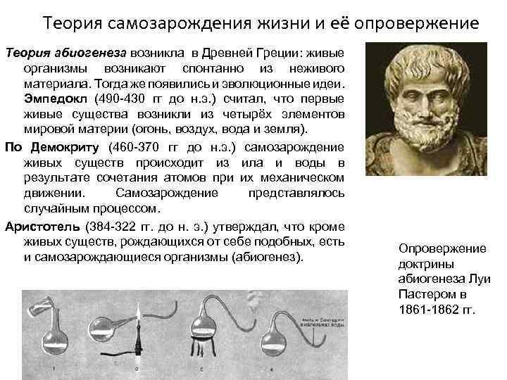 Теория самозарождения жизни и её опровержение Теория абиогенеза возникла в Древней Греции: живые организмы