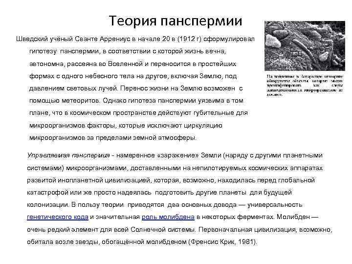 Теория панспермии Шведский учёный Сванте Аррениус в начале 20 в (1912 г) сформулировал гипотезу