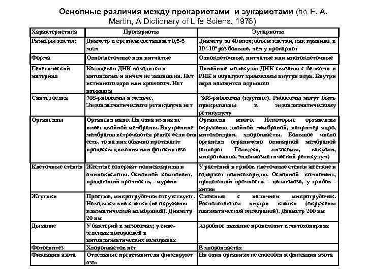 Основные различия между прокариотами и эукариотами (по E. A. Martin, A Dictionary of Life