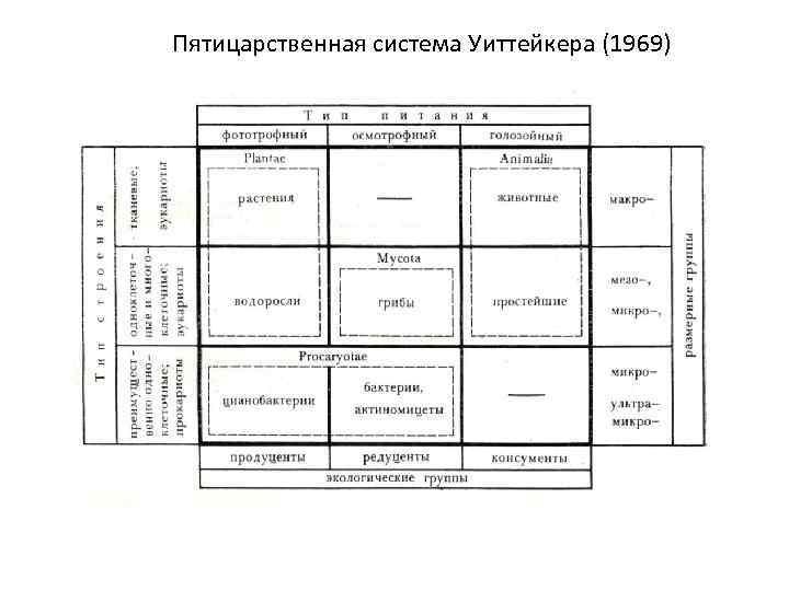 Пятицарственная система Уиттейкера (1969)